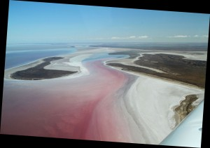 Lake Eyre North from 6000 feet. Note the pink algie flowing in from the Cooper Creek